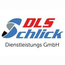 DLS-Schlick